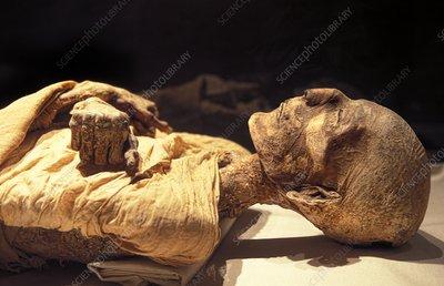 Miracle du coran : La préservation du corps du pharaon