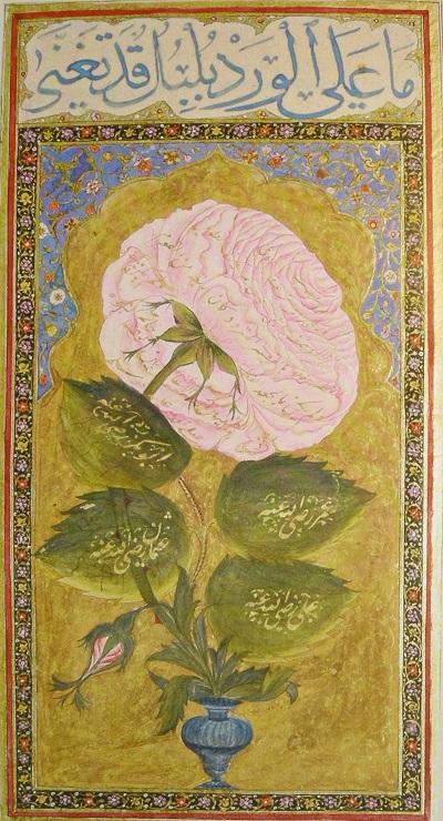 Description du prophète Mohammed , H